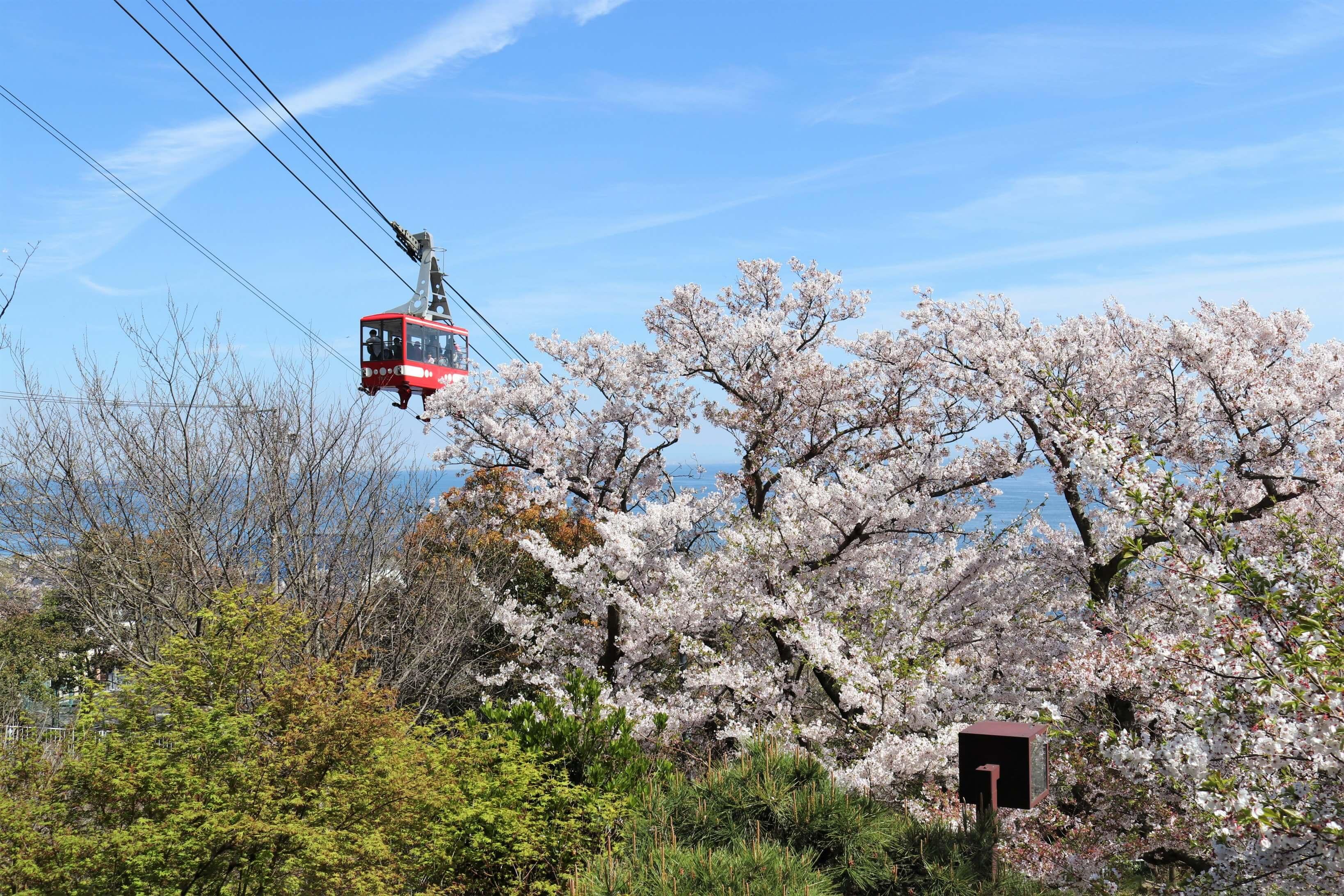須磨浦公園・須磨浦山上遊園・須磨観光ハウスの様子