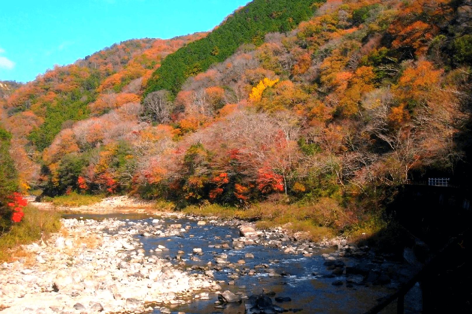 武田尾廃線敷の展望広場