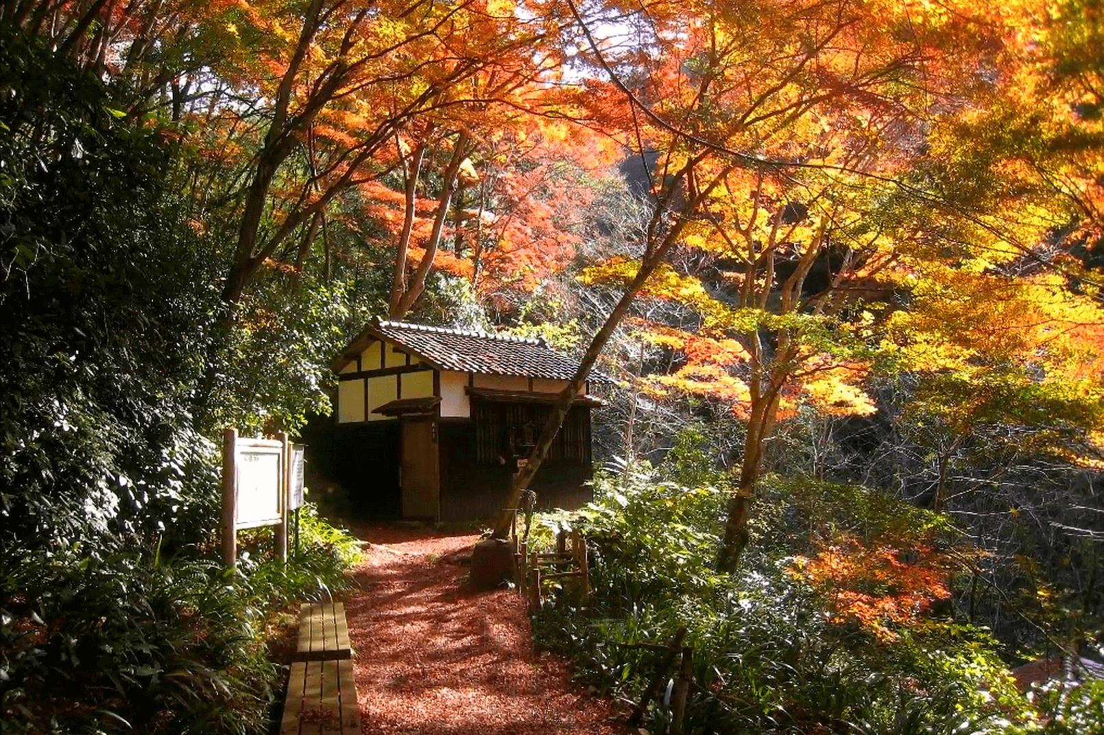 武田尾廃線敷の桜の園にある亦楽山荘と隔水亭