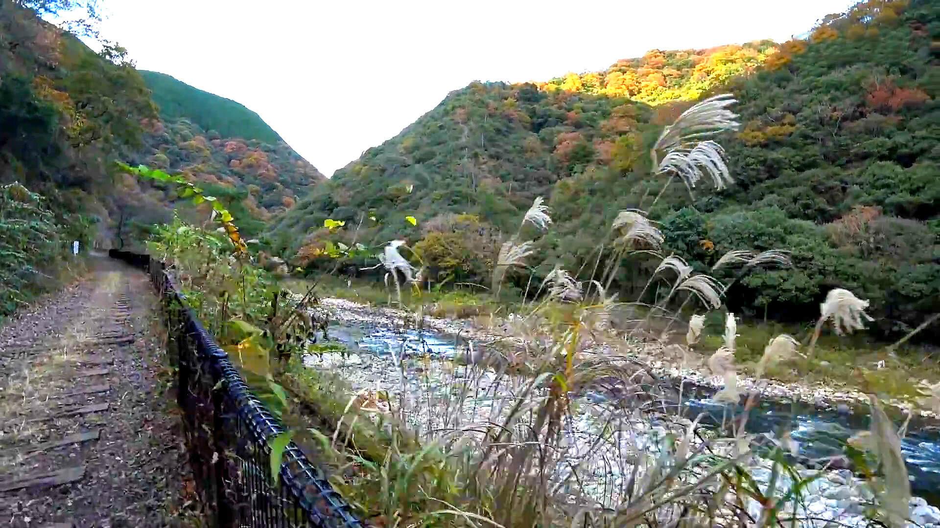 武田尾廃線敷の北山第1トンネルを通過し北山第2トンネルへ向かう