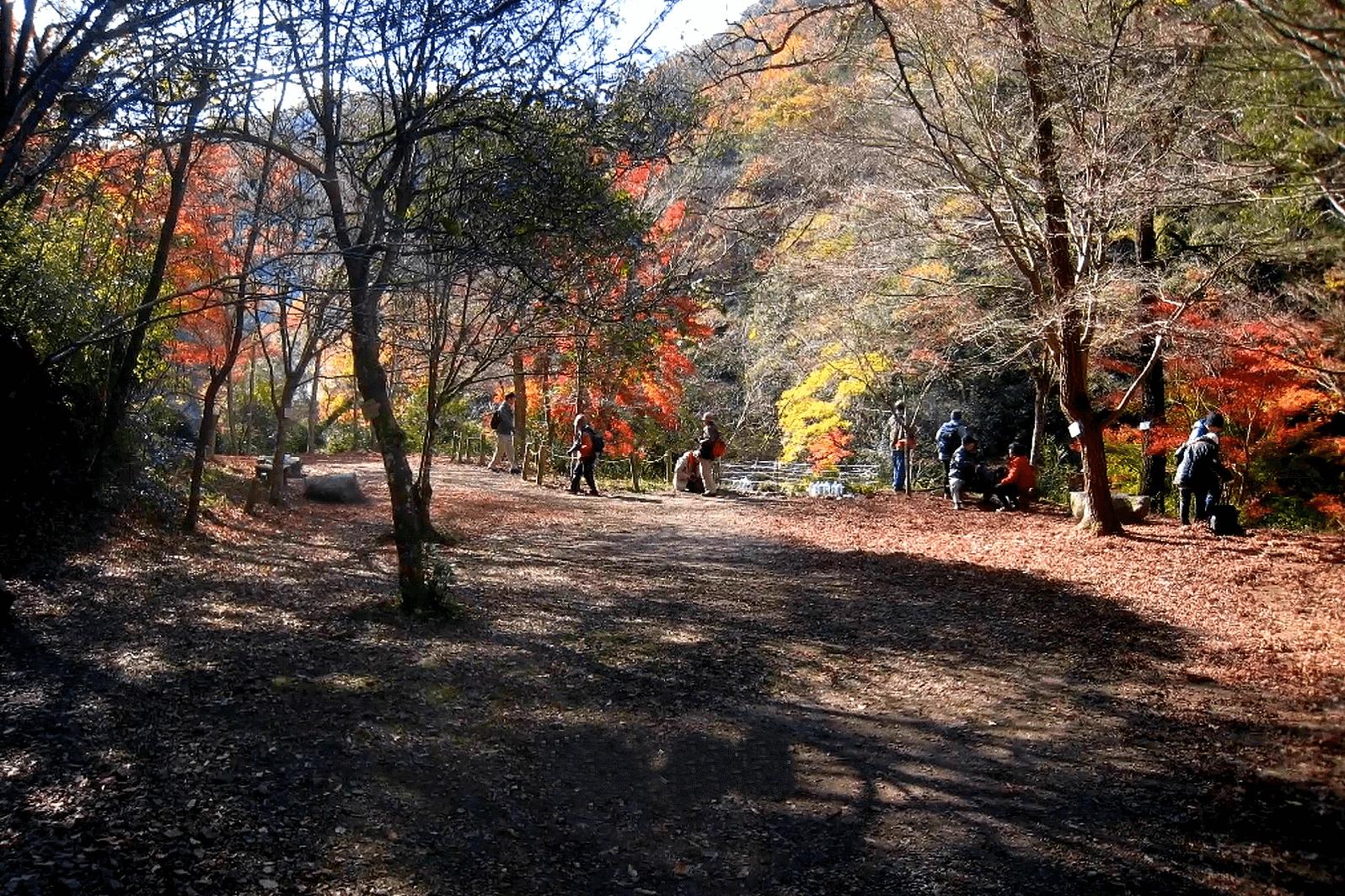 武田尾廃線敷の展望広場と親水広場と桜の園
