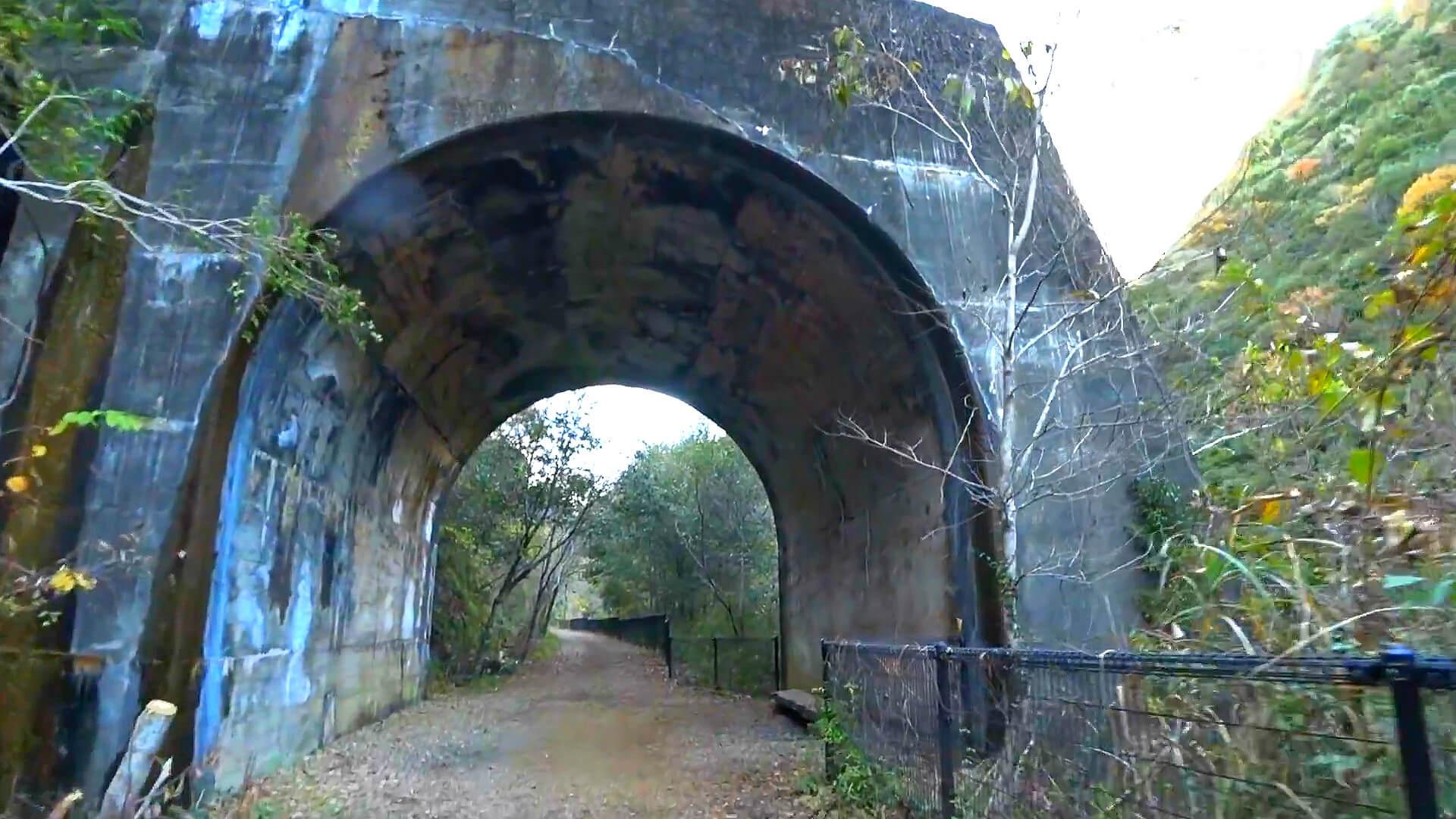 武田尾廃線敷の北山第2トンネルを抜けてしばらく行くと短いトンネル