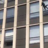高所から飛び降りる猫
